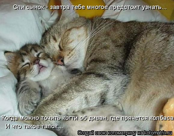 Спи сынок - завтра тебе многое предстоит узнать... Когда можно точить