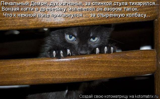Котоматрица: Печальный Демон, дух изгнанья, за спинкой стула тихарился...  Вонзая когти в древесину, испепелял он взором тапок, Что к нежной попе прикасну