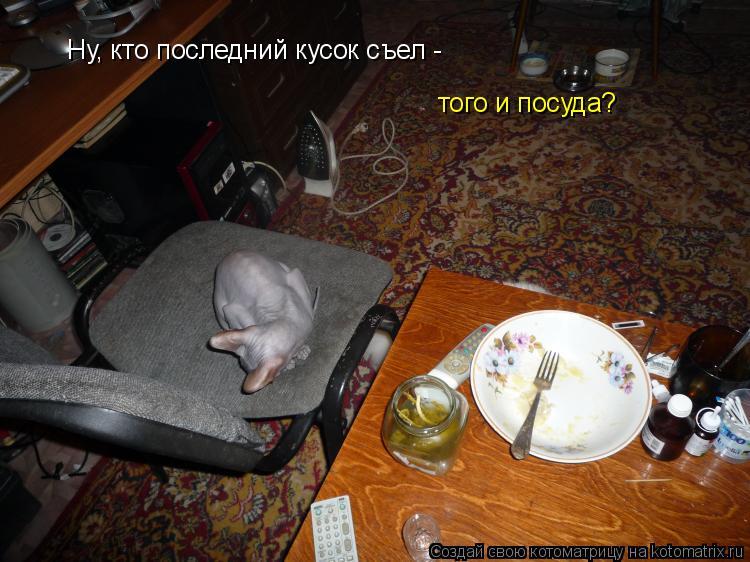 Котоматрица: Ну, кто последний кусок съел -  того и посуда?