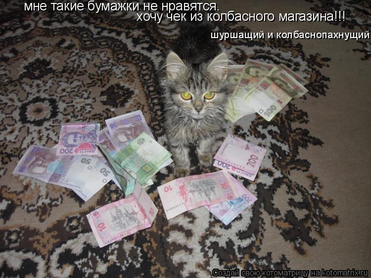 Котоматрица: мне такие бумажки не нравятся. хочу чек из колбасного магазина!!! шуршащий и колбаснопахнущий