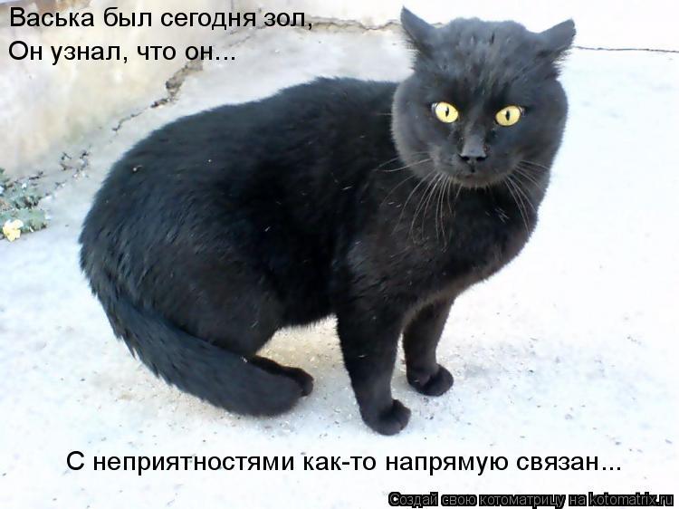 Котоматрица: Васька был сегодня зол, Он узнал, что он... С неприятностями как-то напрямую связан...