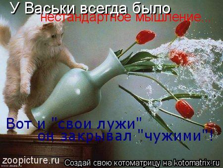 """Котоматрица: У Васьки всегда было  нестандартное мышление... Вот и """"свои лужи""""  он закрывал """"чужими""""!"""