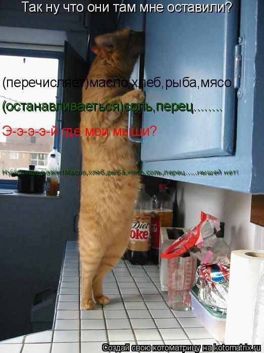 Котоматрица: Так ну что они там мне оставили? (перечисляет)масло,хлеб,рыба,мясо. (останавливаеться)соль,перец........ Э-э-э-э-й где мои мыши? Ну-ка ещё разик!Ма