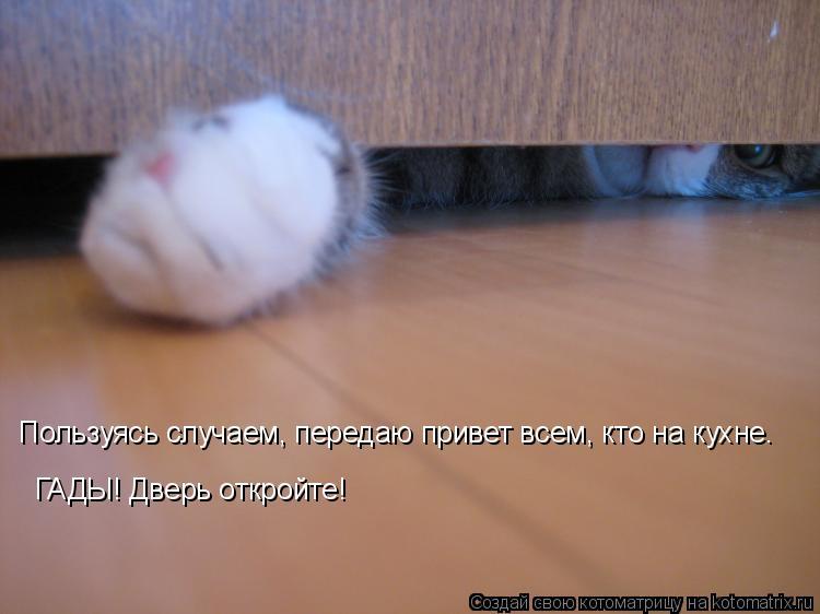 http://kotomatrix.ru/images/lolz/2010/11/24/747054.jpg
