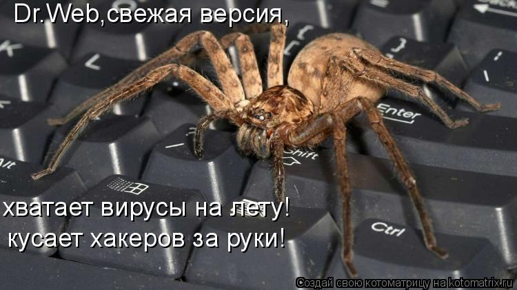 Котоматрица: Dr.Web,свежая версия, кусает хакеров за руки! хватает вирусы на лету!