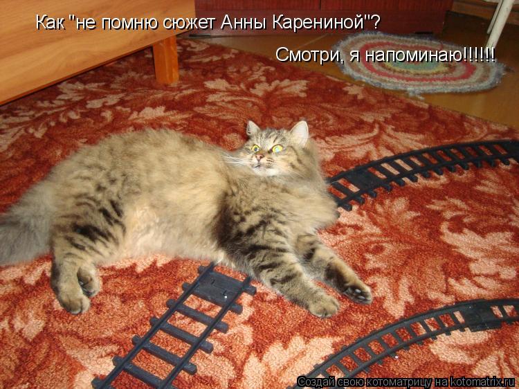 """Котоматрица: Как """"не помню сюжет Анны Карениной""""? Смотри, я напоминаю!!!!!!"""