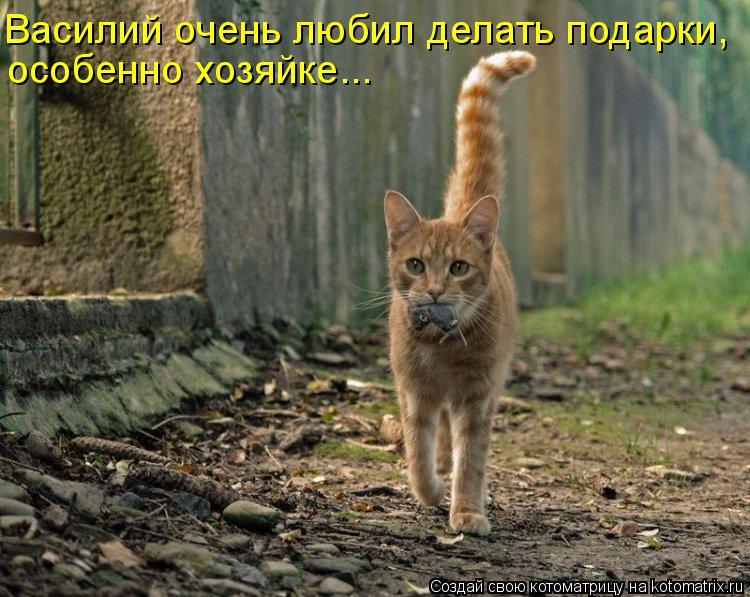Котоматрица: Василий очень любил делать подарки, особенно хозяйке...