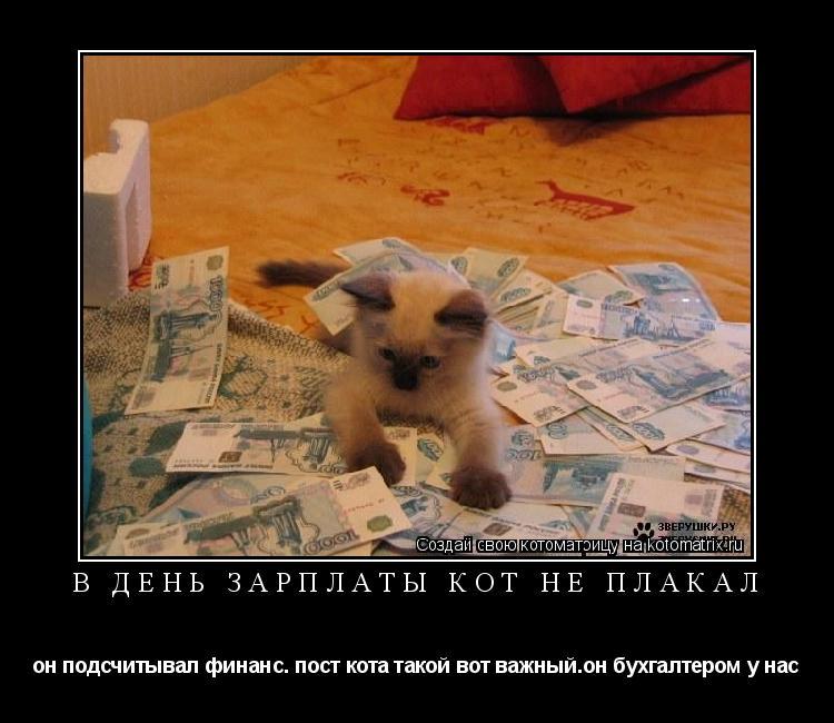 Котоматрица: в день зарплаты кот не плакал он подсчитывал финанс. пост кота такой вот важный.он бухгалтером у нас