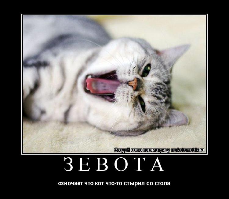 Котоматрица: зевота  озночает что кот что-то стырил со стола