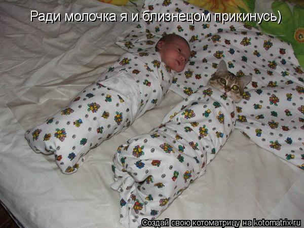Котоматрица: Ради молочка я и близнецом прикинусь)