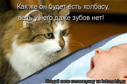 Котоматрица: Как же он будет есть колбасу, ведь у него даже зубов нет!
