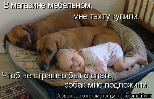 http://kotomatrix.ru/images/lolz/2010/11/25/747531.jpg