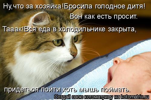 Котоматрица: Ну,что за хозяйка!Бросила голодное дитя! Вон как есть просит. Тааак!Вся еда в холодильнике закрыта, придеться пойти хоть мышь поймать.
