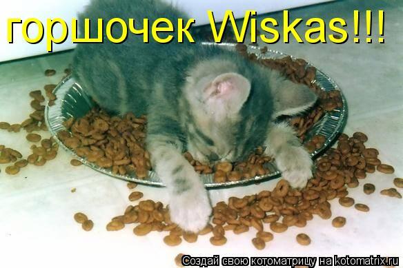 Котоматрица: горшочек Wiskas!!!