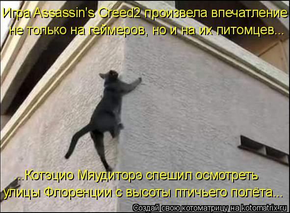 Котоматрица: Игра Assassin's Creed2 произвела впечатление  ...Котэцио Мяудиторэ спешил осмотреть  улицы Флоренции с высоты птичьего полёта... не только на геймер