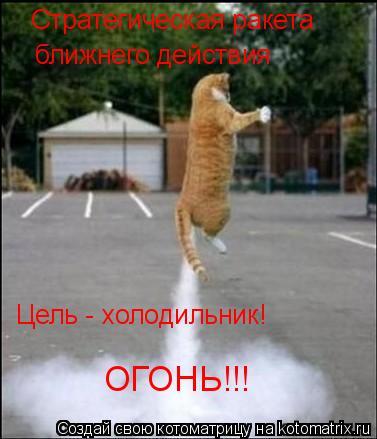 Котоматрица: Стратегическая ракета  ближнего действия Цель - холодильник! ОГОНЬ!!!