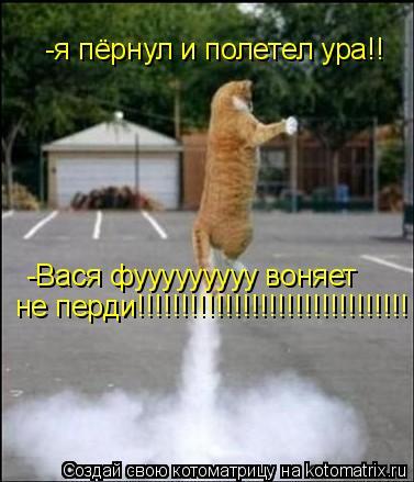 Котоматрица: -я пёрнул и полетел ура!! -Вася фууууууууу воняет не перди!!!!!!!!!!!!!!!!!!!!!!!!!!!!!!!