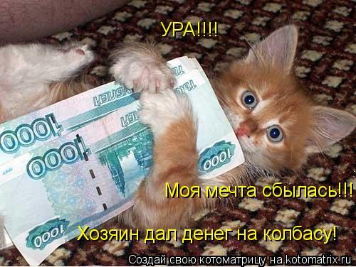 Котоматрица: УРА!!!! Моя мечта сбылась!!! Хозяин дал денег на колбасу!