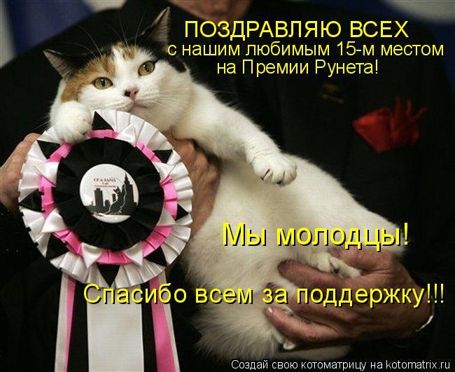 Котоматрица: ПОЗДРАВЛЯЮ ВСЕХ с нашим любимым 15-м местом на Премии Рунета! Мы молодцы! Спасибо всем за поддержку!!!