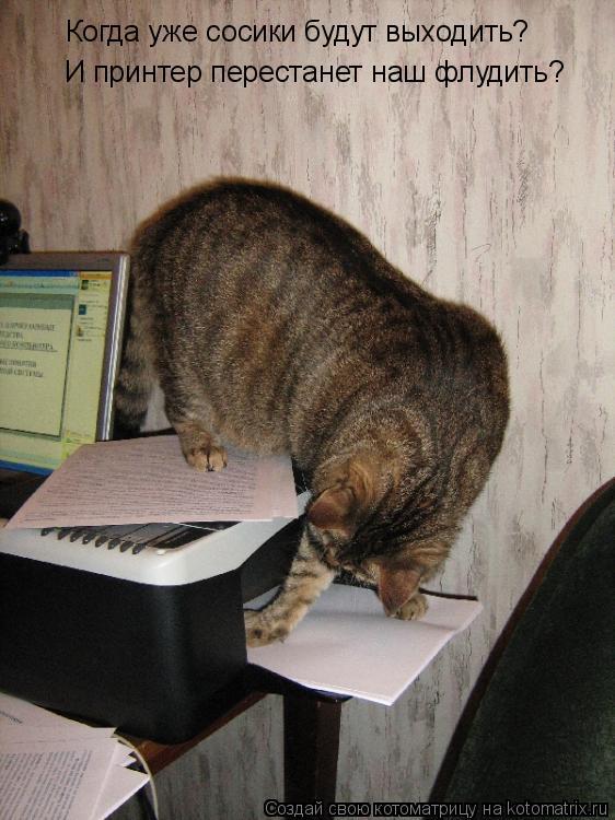 Котоматрица: Когда уже сосики будут выходить? И принтер перестанет наш флудить?
