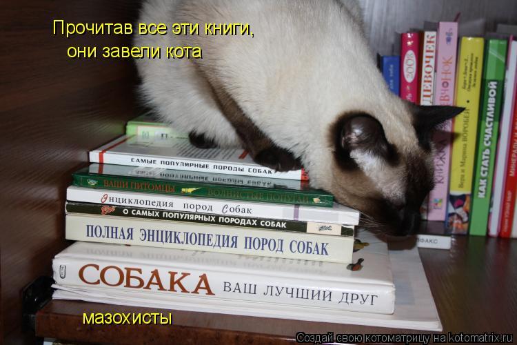 Котоматрица: Прочитав все эти книги, они завели кота мазохисты