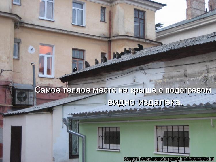 Котоматрица: видно издалека. Самое теплое место на крыше с подогревом