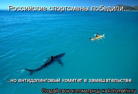 Котоматрица: Российские спортсмены победили... ...но антидопинговый комитет в замешательстве