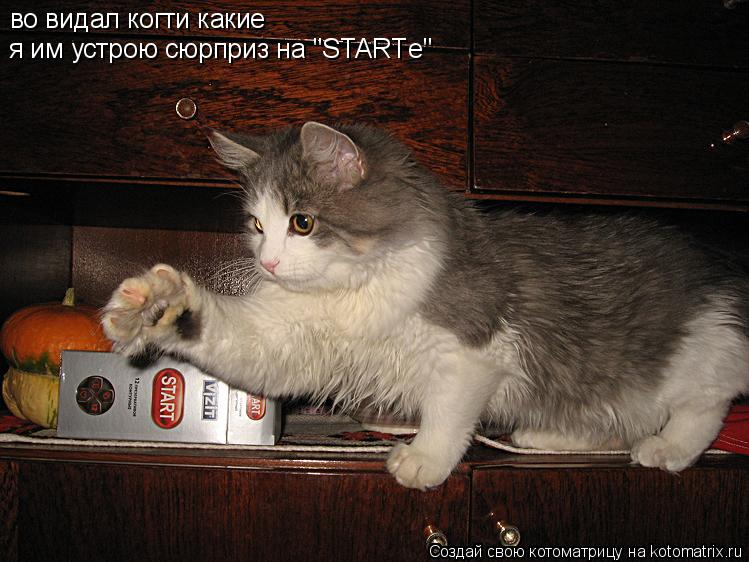"Котоматрица: во видал когти какие я им устрою сюрприз на ""STARTе"""