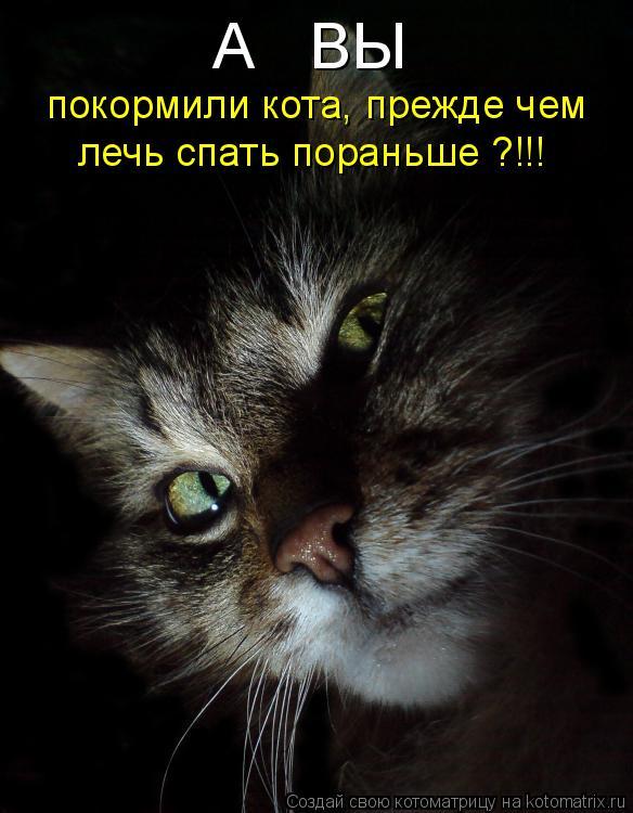 Котоматрица: А   ВЫ  покормили кота, прежде чем  лечь спать пораньше ?!!!