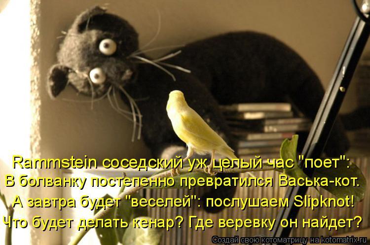 """Котоматрица: Rammstein соседский уж целый час """"поет"""": В болванку постепенно превратился Васька-кот. А завтра будет """"веселей"""": послушаем Slipknot! Что будет делать"""