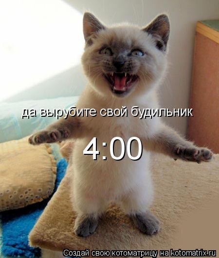 Котоматрица: да вырубите свой будильник 4:00