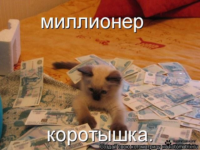 Котоматрица: миллионер коротышка.