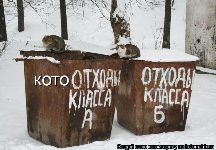 Котоматрица: кото
