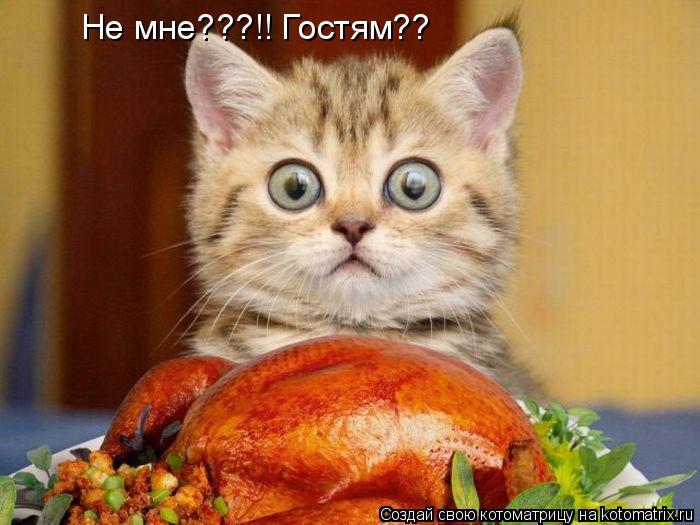 http://kotomatrix.ru/images/lolz/2010/11/27/750025.jpg