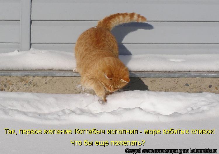 Котоматрица: Так, первое желание Коттабыч исполнил - море взбитых сливок! Что бы ещё пожелать?