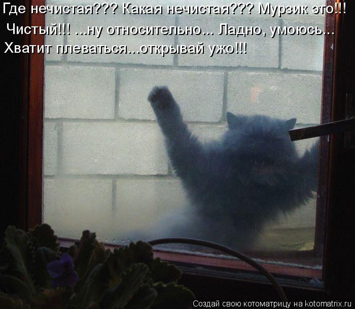 Котоматрица: Где нечистая??? Какая нечистая??? Мурзик это!!! Чистый!!! ...ну относительно... Ладно, умоюсь... Хватит плеваться...открывай ужо!!!