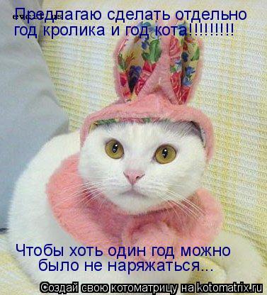 Котоматрица: Предлагаю сделать отдельно год кролика и год кота!!!!!!!!! Чтобы хоть один год можно  было не наряжаться...