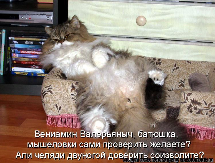 Вениамин Валерьяныч, батюшка, мышеловки сами проверить желаете? Али че