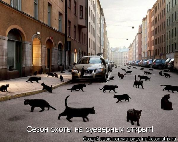 Котоматрица: Сезон охоты на суеверных открыт!