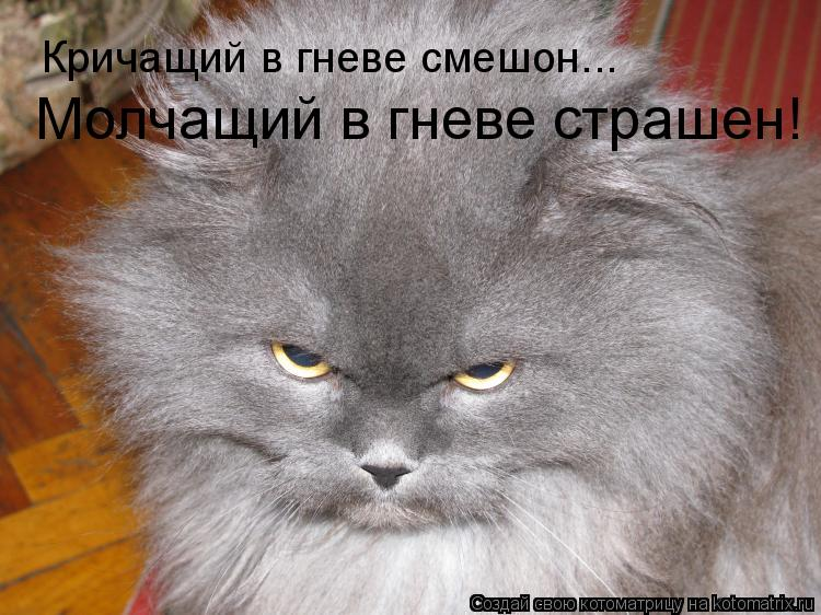 Котоматрица: Кричащий в гневе смешон... Молчащий в гневе страшен!