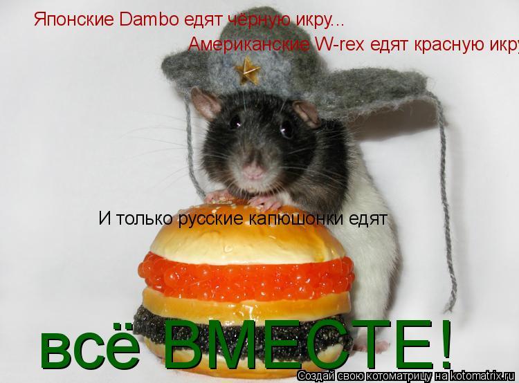 Котоматрица: Японские Dambo едят чёрную икру... Американские W-rex едят красную икру... И только русские капюшонки едят всё ВМЕСТЕ!