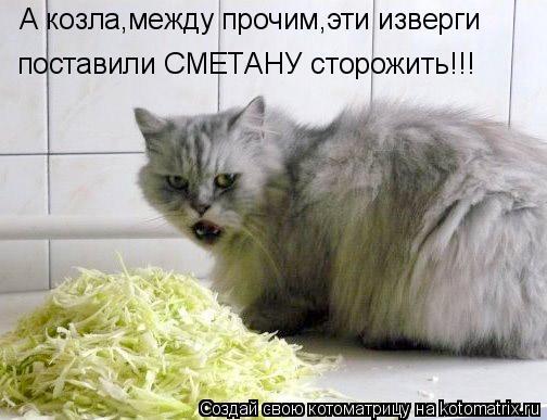 Котоматрица: А козла,между прочим,эти изверги  поставили СМЕТАНУ сторожить!!!