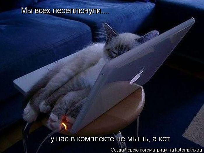 Котоматрица: Мы всех переплюнули.... ...у нас в комплекте не мышь, а кот.