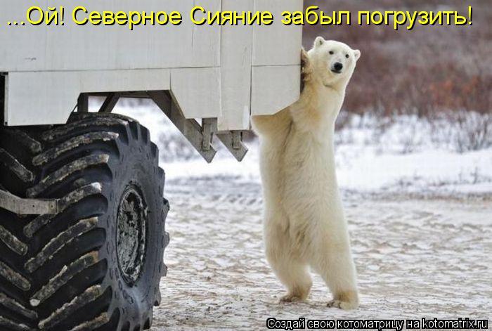 Котоматрица: ...Ой! Северное Сияние забыл погрузить!