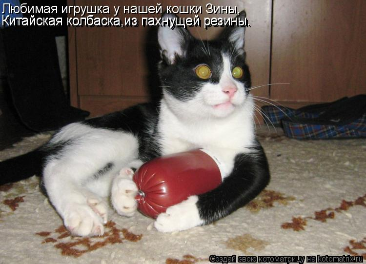 Котоматрица: Китайская игрушка- колбаска из резины, Любимая игрушка у нашей кошки Зины, Китайская колбаска,из пахнущей резины. Китайская колбаска,из пах