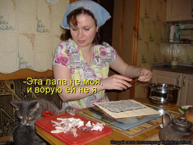 Котоматрица: -Эта лапа не моя, и ворую ей не я...