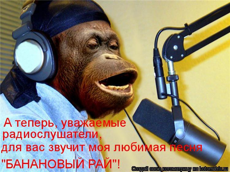 """Котоматрица: А теперь, уважаемые  радиослушатели,  для вас звучит моя любимая песня """"БАНАНОВЫЙ РАЙ""""!"""