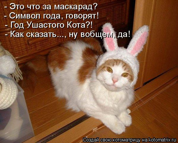 - Это что за маскарад? - Символ года, говорят! - Год Ушастого Кота?! -