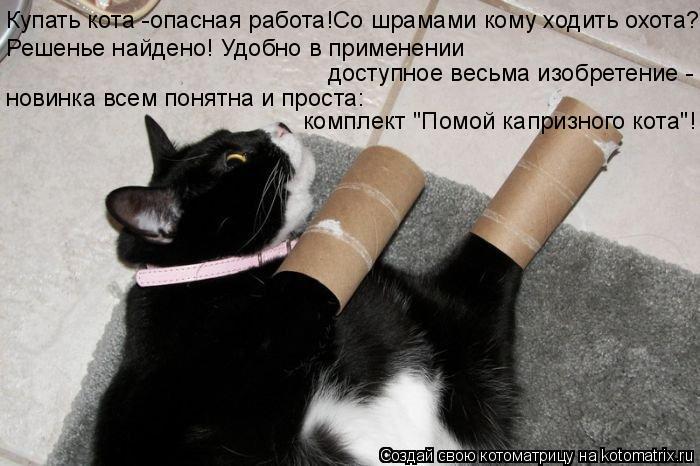 Котоматрица: Купать кота -опасная работа!Со шрамами кому ходить охота? Решенье найдено! Удобно в применении доступное весьма изобретение - новинка всем