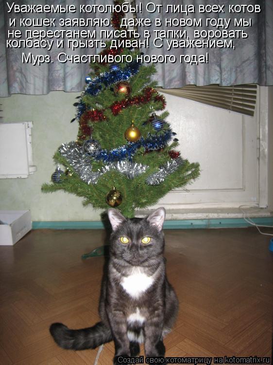Котоматрица: Уважаемые котолюбы! От лица всех котов и кошек заявляю:  даже в новом году мы не перестанем писать в тапки, воровать колбасу и грызть диван! С